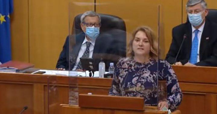 """""""JA SAM DJEVOJČICA IZ KOLONE"""" Poslanica govorila o """"Oluji"""" u Hrvatskom saboru"""