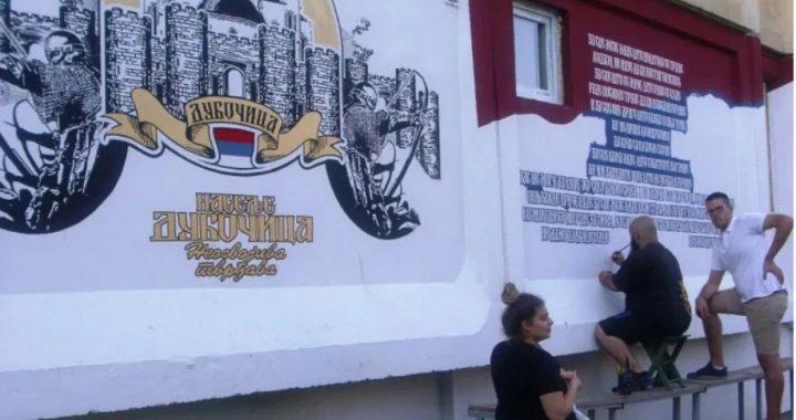 Nije teško voleti svoj grad – ovaj momak iz Leskovca to pokazuje