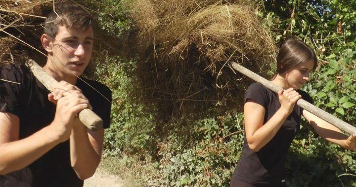 MALI HEROJI:Ostali bez oca, obrađuju 5 hektara zemlje