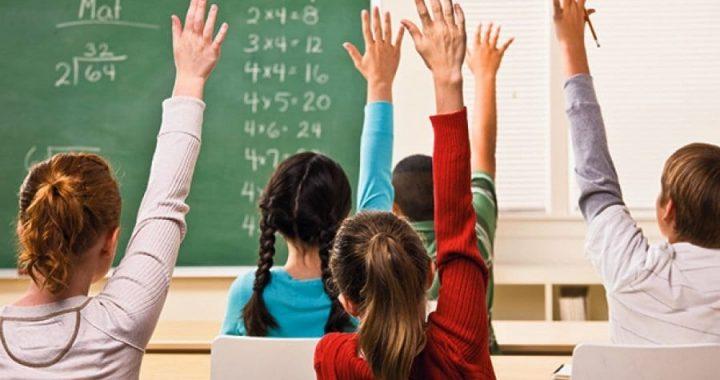 Svetomir Bojanin: Programi u školi su kao da mrzimo decu
