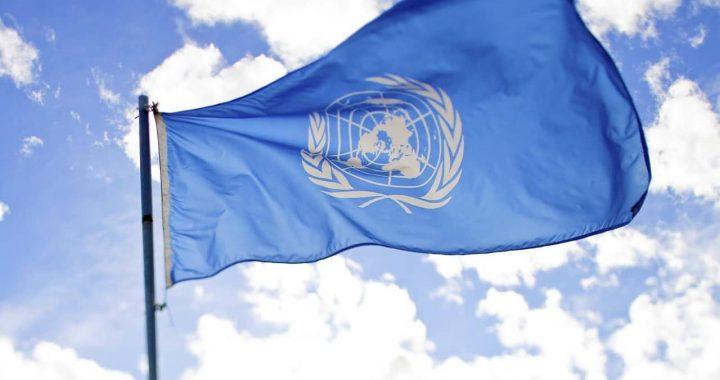 Ima li poštovanja za Srbiju u UN?